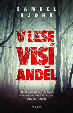 V lese visí anděl obálka knihy