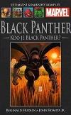 Black Panther: Kdo je Black Panther?