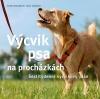 Výcvik psa na procházkách