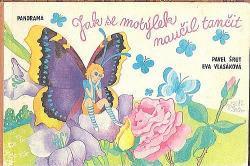 Jak se motýlek naučil tančit obálka knihy