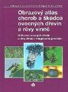 Obrazový atlas chorob a škůdců ovocných dřevin a révy vinné
