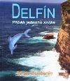 Delfín, příběh jednoho snílka obálka knihy