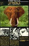 Afrika – Život a smrt zvířat