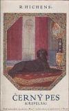 Černý pes obálka knihy