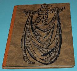 Modrý závoj obálka knihy