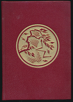 Vichřice I. obálka knihy