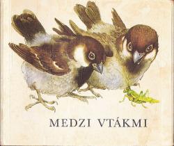 Medzi vtákmi obálka knihy