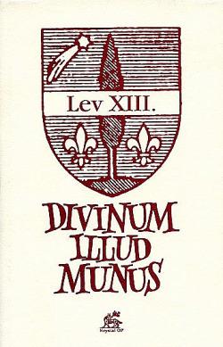 Divinum illud munus obálka knihy