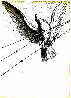 333 Sokolská župa Moravskoslezská obálka knihy