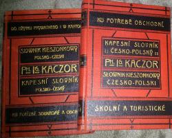 Nový kapesní slovník česko-polský a polsko-český obálka knihy