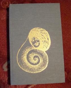 Zvony před bouří obálka knihy