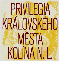 Privilegia Královského města Kolína n. Labem obálka knihy