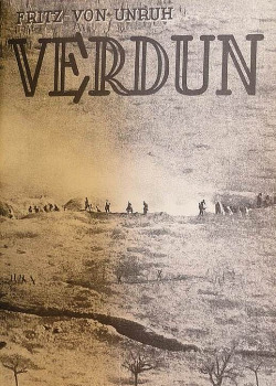 Verdun obálka knihy