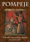 Pompeje-průvodce starověkým městem obálka knihy