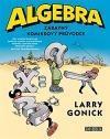 Algebra - Zábavný komiksový průvodce