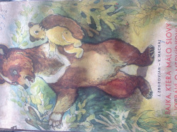 Bajka, která málo slovy vypráví o medvídkovi obálka knihy