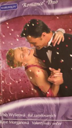 Bál zamilovaných / Valentýnský večer obálka knihy