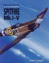 Spitfire Mk. I - V