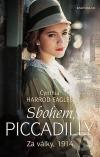 Sbohem, Piccadilly: Za války, 1914