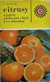 Citrusy a jejich pěstování v bytě a ve skleníku