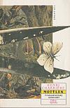 Motýlek 2. díl