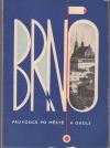 Brno - Průvodce po městě a okolí