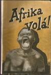 Afrika volá! Cestování v zemi neobmezených možností (1. sv.)