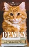 Dewey – kocour z knihovny, který okouzlil celý svět