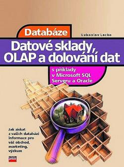 Datové sklady analýza OLAP a dolování dat obálka knihy