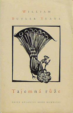 Tajemná růže obálka knihy