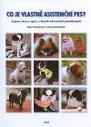 Co je vlastně asistenční pes?