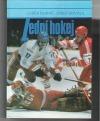 Lední hokej Trénink herní dokonalosti