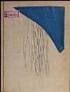 Kniha Zulejčina