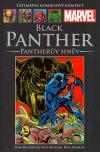 Black Panther: Pantherův hněv