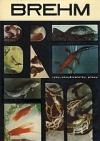 Život zvierat 2. Ryby, obojživelníky, plazy