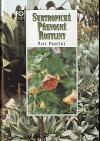 Subtropické přenosné rostliny