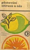 Pěstování citrusů u nás