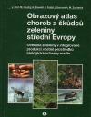 Obrazový atlas chorob a škůdců zeleniny střední Evropy