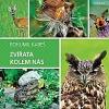Zvířata kolem nás