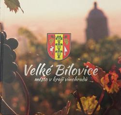 Velké Bílovice - město v kraji vinohradů obálka knihy
