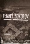 Temný Sokolov