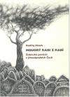 Moudrý rabi z Rabí. Židovské pověsti z Jihozápadních Čech