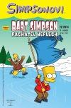 Bart Simpson 12/2014: Pachatel neplech