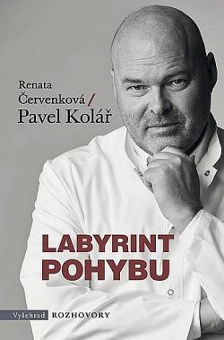 Labyrint pohybu obálka knihy