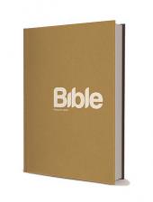 Bible 21 obálka knihy
