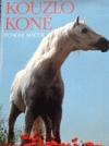 Kouzlo koně