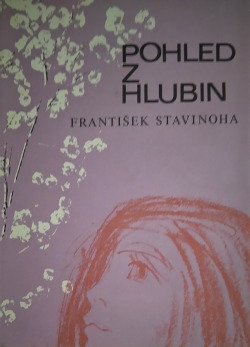 Pohled z hlubin obálka knihy