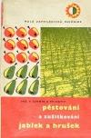 Pěstování a zužitkování jablek a hrušek