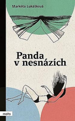 Panda v nesnázích obálka knihy