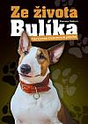 Ze života Bulíka - Pokračování Dexterových příběhů